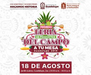 BANNER FERIA DE PRODUCTOS DEL CAMPO 02