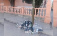 Tiraderos de basura en calles Mazapil generan indignación entre internautas