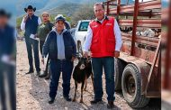 Entregan apoyos del Programa Apoyo a la Mujer Rural en el semidesierto Zacatecanos