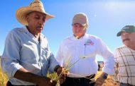 Impulsa Gobierno de Zacatecas tecnificación del campo