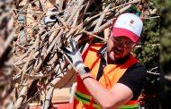 Encabeza Ulises Mejía Programa  Zacatecas Limpio