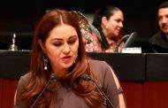 Exhorta Geovanna Bañuelos a la FGR atraiga denuncias contra Miguel Alonso Reyes