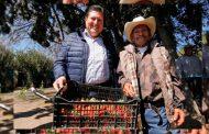 Construye Gobierno del Estado cámara fría para producción de fresa en Villa García