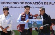 Municipio de Guadalupe tendrá 150 mil Pinos para Reforestación
