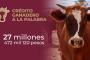 Video: Invertirá 5 mdp Ulises Mejía Haro para tecnificación del campo en la capital
