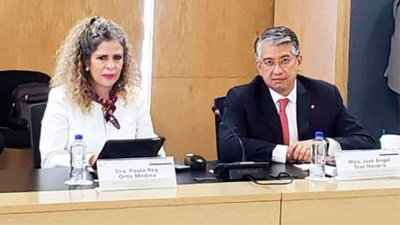 Forma parte secretaria de la función pública del comité rector del sistema nacional de fiscalización