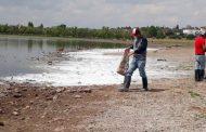 Atiende el Ayuntamiento la problemática de la laguna en La Zacatecana