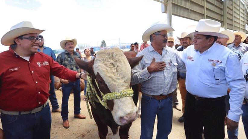Saúl Monreal Ávila dio el sombrerazo de salida a 420 novillo y 200 sementales del programa: Crédito Ganadero a la Palabra