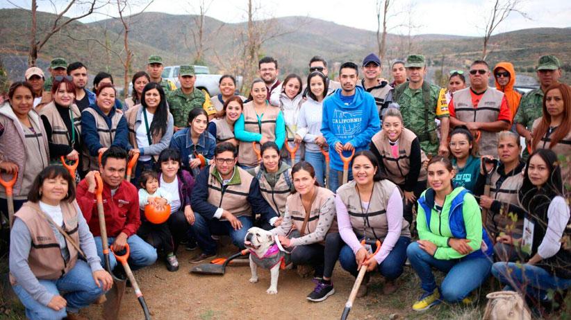 Participan Servidores de la Nación en reforestación de La Bufa