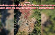 Video: Invitan a conocer el Jardín Temático en Parque Arroyo de la Plata con especies endémicas y semiendémicas