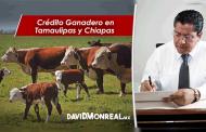 Crédito Ganadero en Tamaulipas y Chiapas