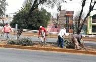 Trabajadores del Gobierno Estatal dan mantenimiento al bulevar Metropolitano