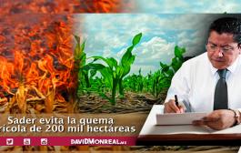 SADER evita la quema agrícola de 200 mil hectáreas