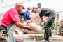 Distribuye Gobierno del Estado material para construcción entre familias de Villa González Ortega