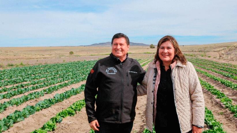 Apoya SECAMPO la agricultura autosustentable y orgánica en Genaro Codina