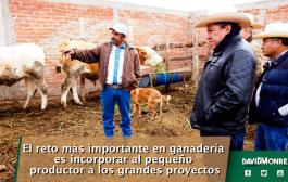 El reto más importante en ganadería es incorporar al pequeño productor a los grandes proyectos.
