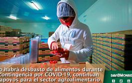 No habrá desbasto de alimentos durante contingencia por COVID-19, continúan apoyos para el sector agroalimentario