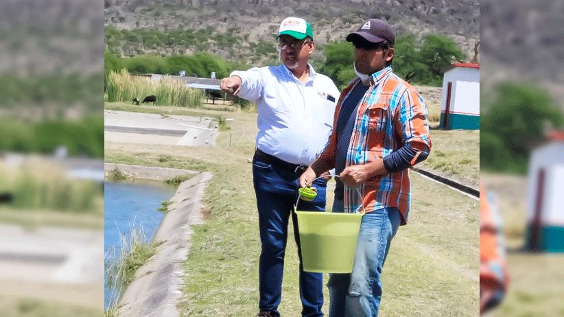 Inicia la siembra de 4 millones de alevines en presa y bordos de Zacatecas.