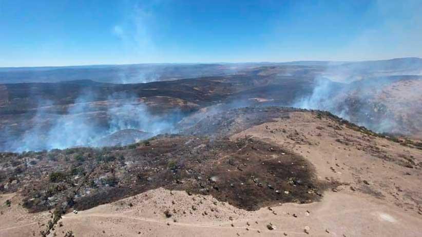 Acuden municipios, dependencias y corporaciones en apoyo a sofocar incendio en predios de Villanueva.