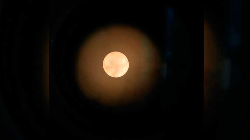 Participan cerca de 11 mil personas en la Primera Noche Astronómica Virtual.