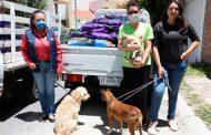 Entrega DIF Estatal cerca de 2 toneladas de alimentos para mascotas.