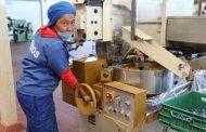 Se incrementa 4% registro ante  el IMSS de nuevas empresas en Zacatecas.