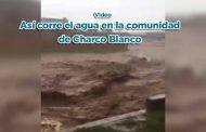 Así corre el agua en la comunidad de Charco Blanco (video)