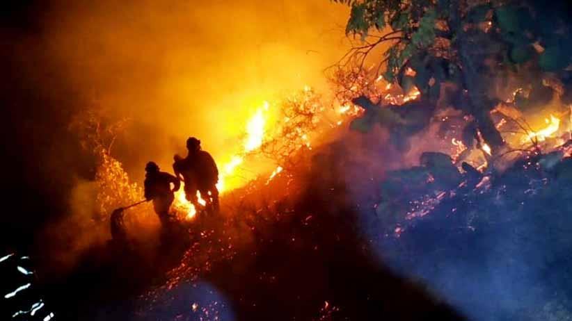 Reporta PC Estatal 479 incendios forestales en 33 municipios