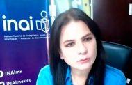 Partidos políticos deben adoptar prácticas de transparencia proactiva: Julieta del Río