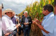 Apuesta Gobernador David Monreal por la tecnificación y modernización de los sistemas de riego